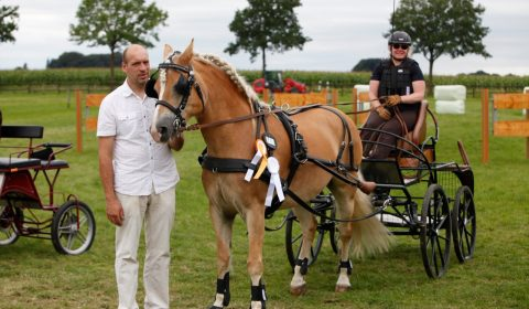 Tanja Blome - Kreismeisterin Einspänner Ponys E-Basis